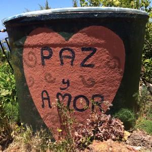 Paz y Amor, Las Tricias, La Palma